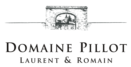 Logo Domaine Laurent Mouton